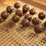Die Schokoladen- und Pralinenproduktion läuft! Mit tollen Produkttipps von Tchibo