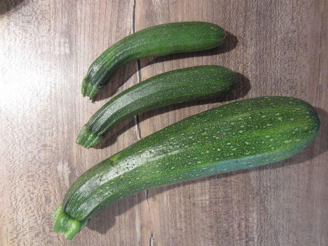kitchencat-zucchiniernte