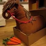 Darf ich vorstellen: Das Pony Bonnie